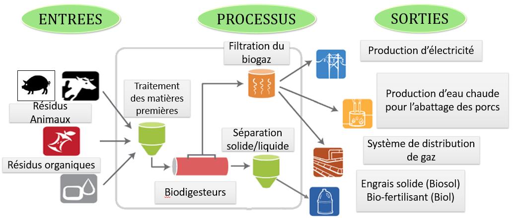 Diagramme Biodigesteurs